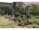 Садовые конструкции: арки, опоры